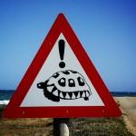beware-turtles