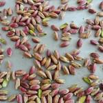 Πώς να φτιάξετε το δικό σας φυστικοβούτυρο (ή άλλο βούτυρο από οποιονδήποτε ξηρό καρπό)