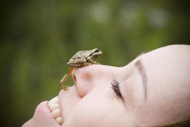 Πώς να διαχειριζόμαστε το χρόνο μας καλύτερα (τρώγοντας το βάτραχό μας)