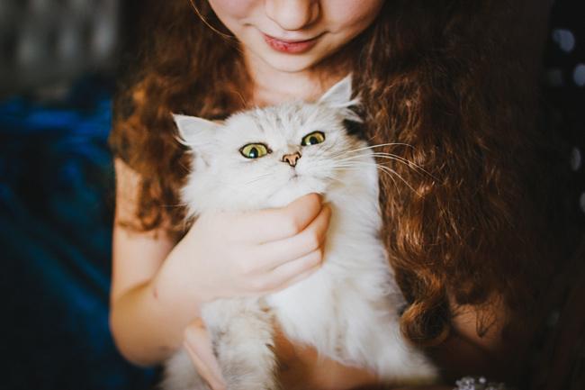 bb866428c581 Ποιος κλώτσησε τη γάτα σου σήμερα  - Aspa Online
