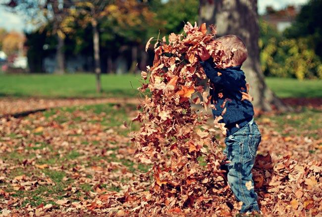30 φθινοπωρινές δραστηριότητες για παιδιά