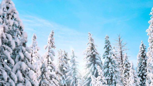 50 λόγοι για να αγαπήσεις τον χειμώνα