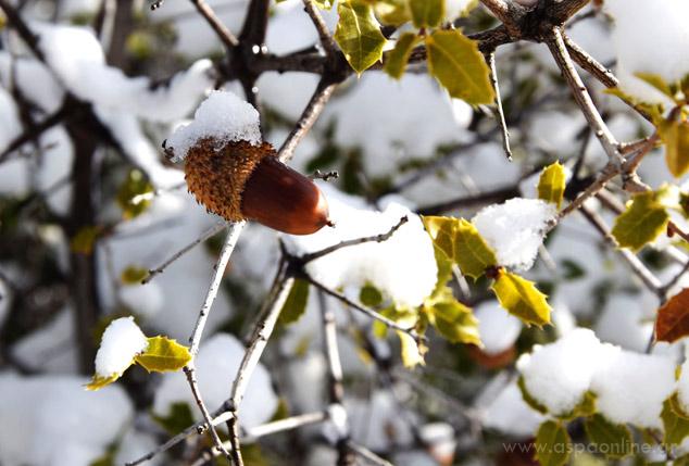 50 λόγοι για να αγαπήσεις το χειμώνα